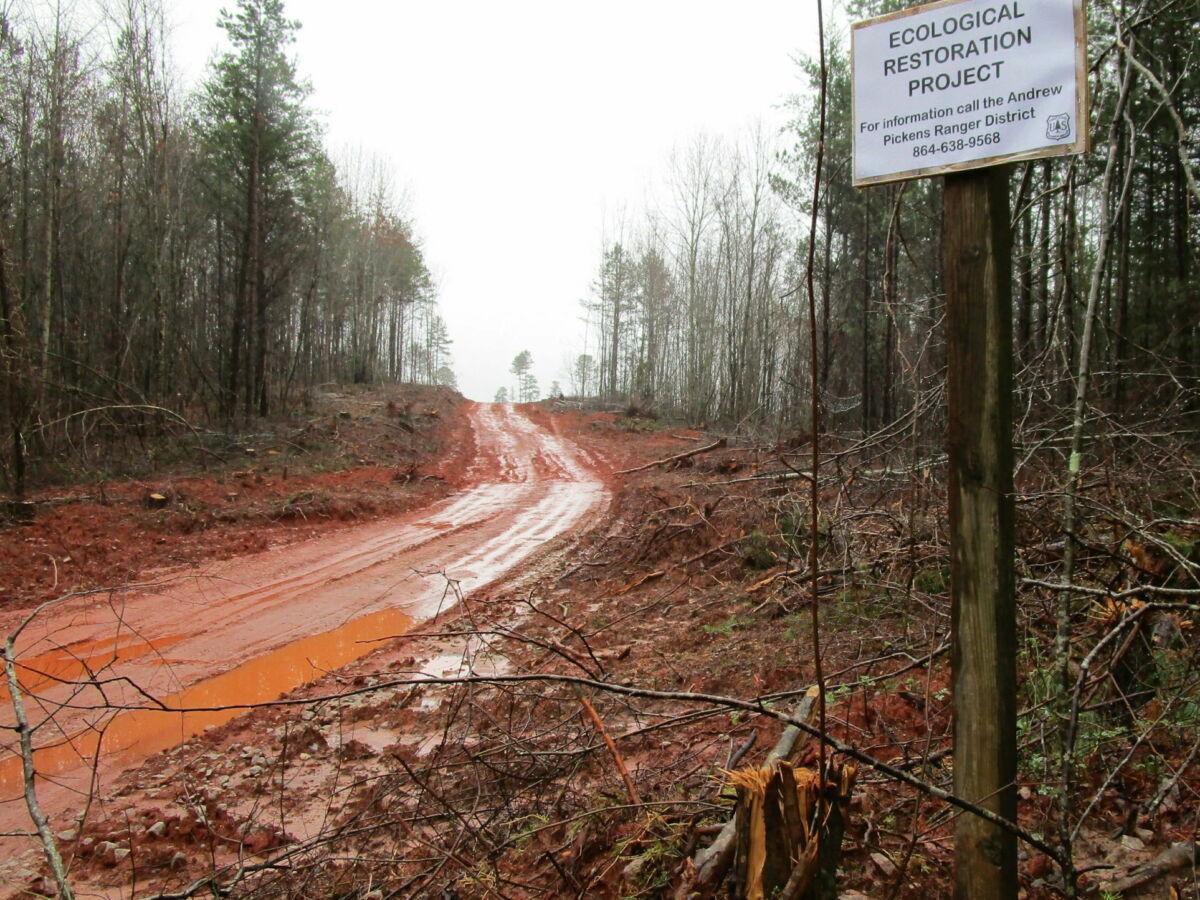 Turkey Ridge Rd. ecological restoration sign2020